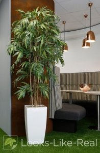 Bamboo 2150/900mm Artificial Office Plant