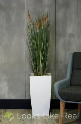 Bulrush 1600/350mm Artificial Office Plant
