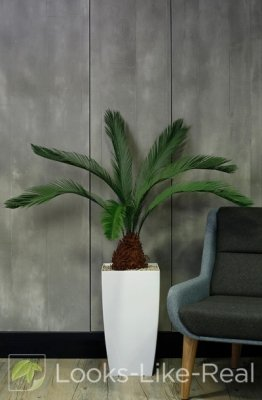 Cycas Palm 1400/1300mm Artificial Office Plant
