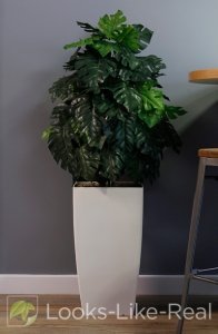 Cheese Plant 1350/700mm Artificial Office Plant