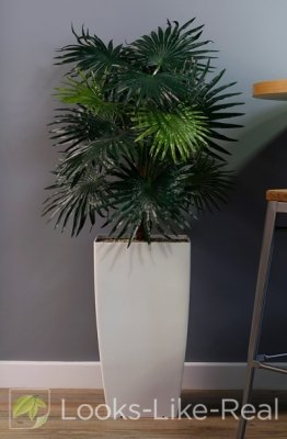 Chinese Fan Palm 1300/600mm Artificial Office Plant