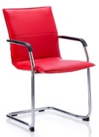 Gentoo Echo Cantilever Chair with Arms