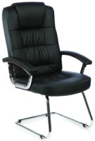 Gentoo Moore Leather Cantilever Chair