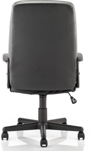 Gentoo Blitz Executive Leather Chair