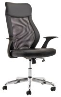 Gentoo Baye Mesh and Leather Operator Chair