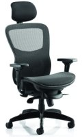 Gentoo Stealth Shadow Ergo Posture Mesh Seat and Back Chair with Arms & Headrest