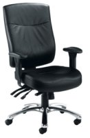 Endurance Marathon Leather Chair