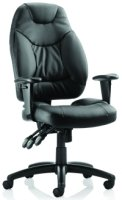 Gentoo Galaxy Leather Chair with Arms