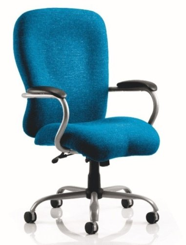 Gentoo Task IV Blue Chair