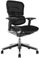 Comfort Ergohuman Plus Elite Mesh Chair