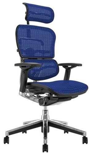 Comfort Ergohuman Plus Elite Mesh Chair with Headrest