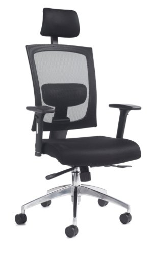 Dams Gemini Task Chair with Adjustable Arms and Headrest