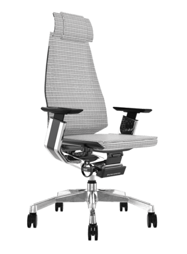 Comfort Genidia Mesh Chair with Headrest