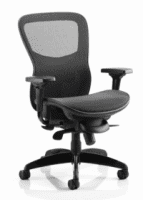 Gentoo Stealth Shadow Ergo Posture Mesh Seat and Back Chair with Arms